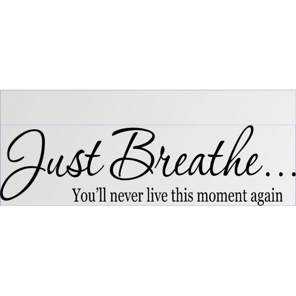 JUST BREATHE YOU\'LL NEVER LIVE THIS MOMENT AGAIN Vinyl wall lettering sticker... [0320I0RLFK2a] | data_11-17-2013 10-47-25 AM.jpg