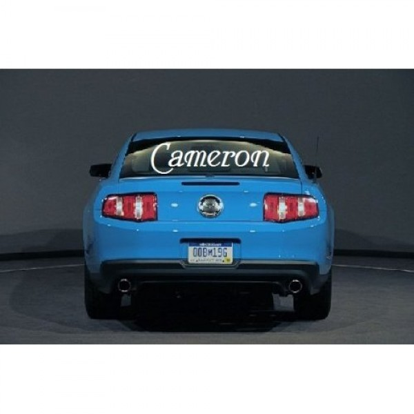 Name for Car back windshield [0131I974WNQ] | data_Cars_41guAiwZO9L._SS500_.jpg