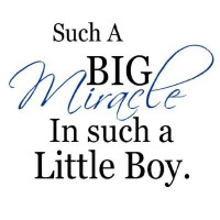 Such a big miracle in such a little boy(blue) vinyl decal wall saying