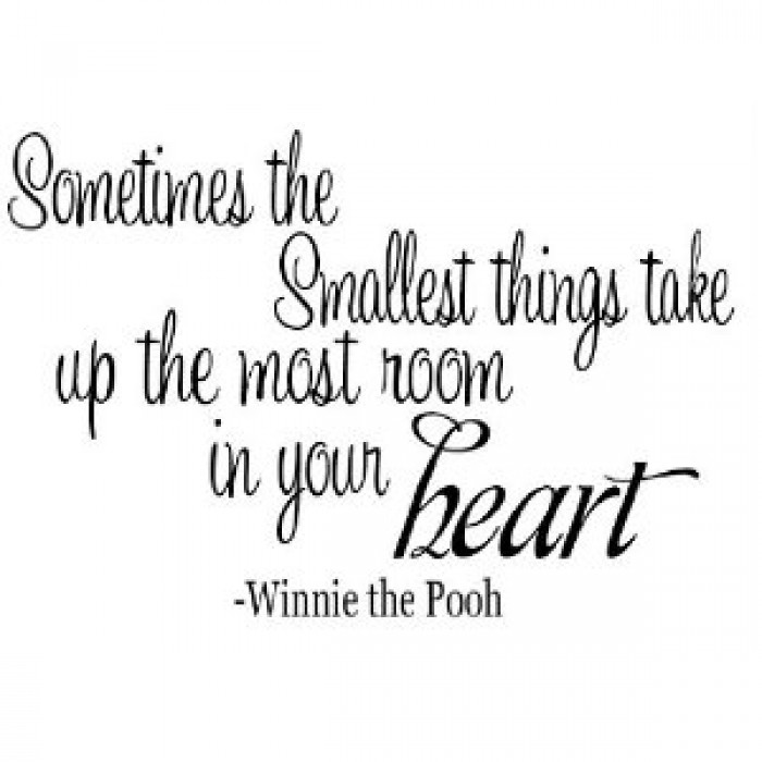 Winnie The Pooh Quotes Sometimes The Smallest Things: Sometimes The Smallest Things Winnie The Pooh Quote (18x11