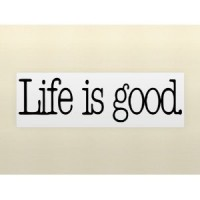 LIFE IS GOOD Vinyl wall lettering stickers quotes and sayings home art decor ...