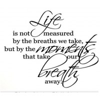 LIFE IS NOT MEASURED BY THE BREATHS WE TAKE, BUT BY THE MOMENTS THAT TAKE OUR..23x28.