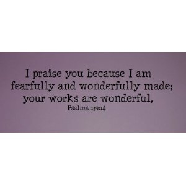 (30x11) I praise you because I am fearfully and wonderfully made wall decal [0109M5363FW] | data_Religious_416lTCdmYcL._SL500_AA300_.jpg