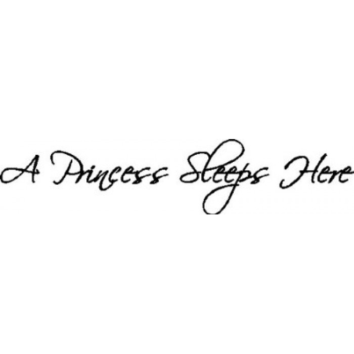A PRINCESS SLEEPS HERE    24X5 WALL QUOTES WORDS SAYINGS LETTERING