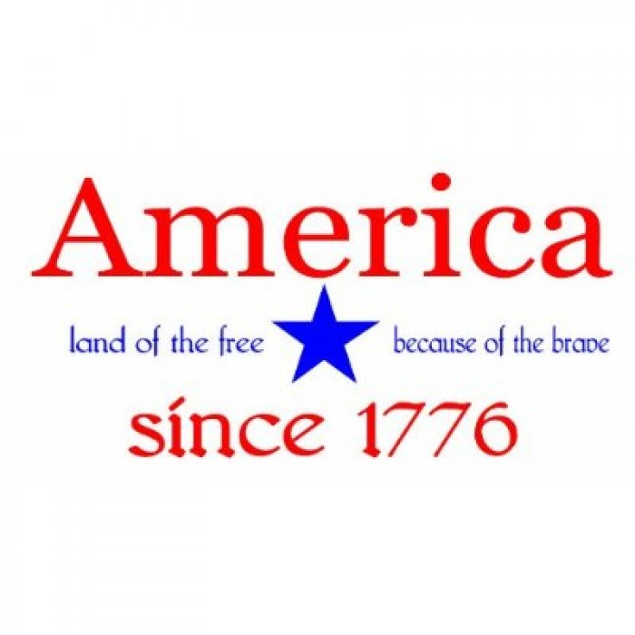 America land of the free because of the brave since 1776 wall saying